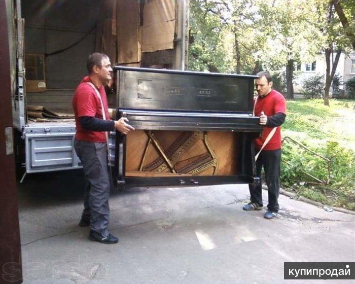 Переезды, Пианино, Калининград