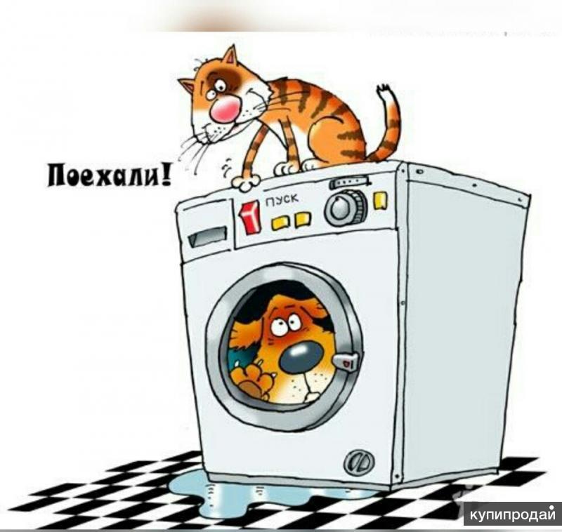 Ремонт стиральных машин в Орле