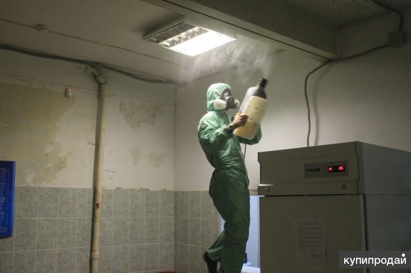 Служба дезинфекции клещей комаров Гороховец