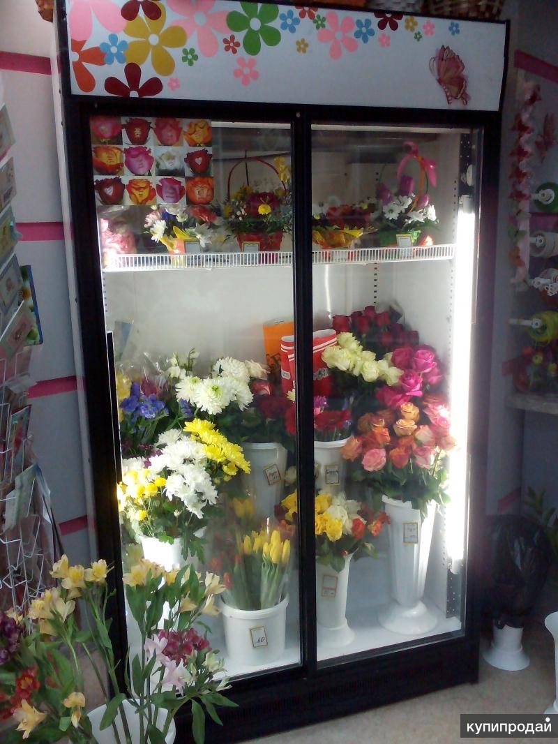 Какой холодильник для цветов