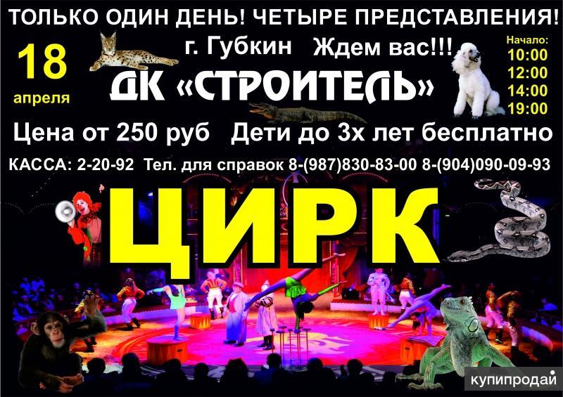 Билеты в Цирк в ДК «Строитель» 18 апреля