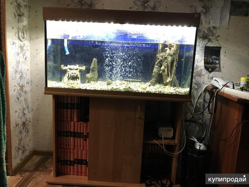 продаётся аквариум с рыбками