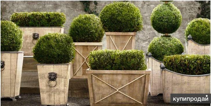 Кашпо деревянные для цветов и деревьев
