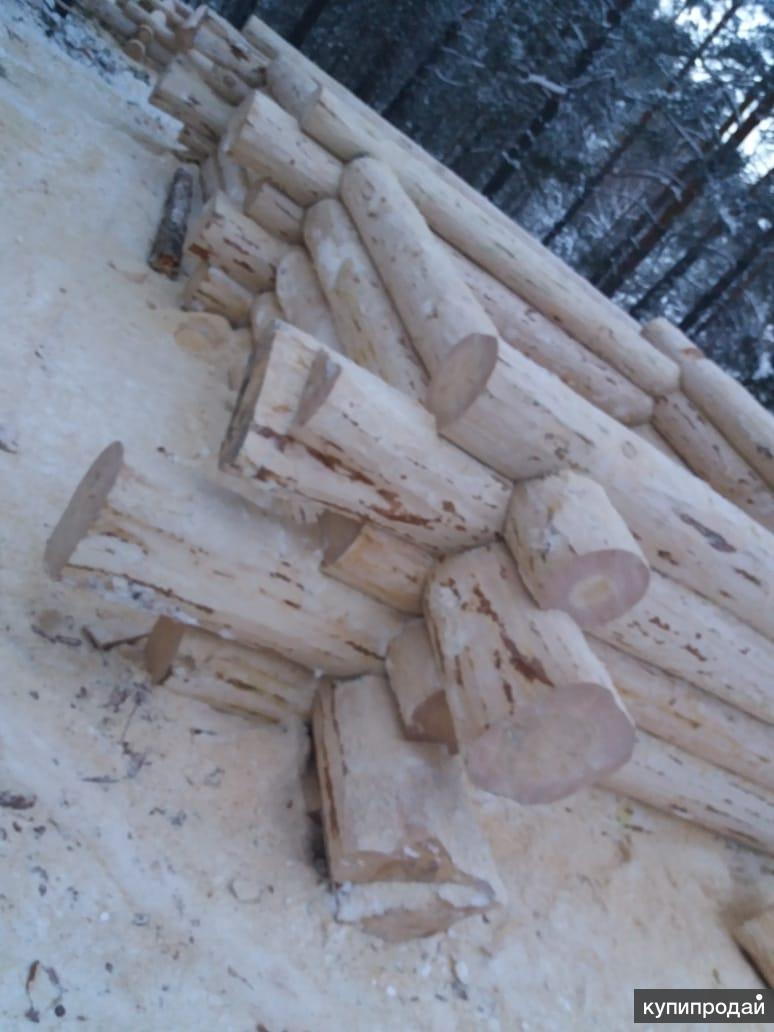 Продаю срубы бань и домов из зимнего леса!
