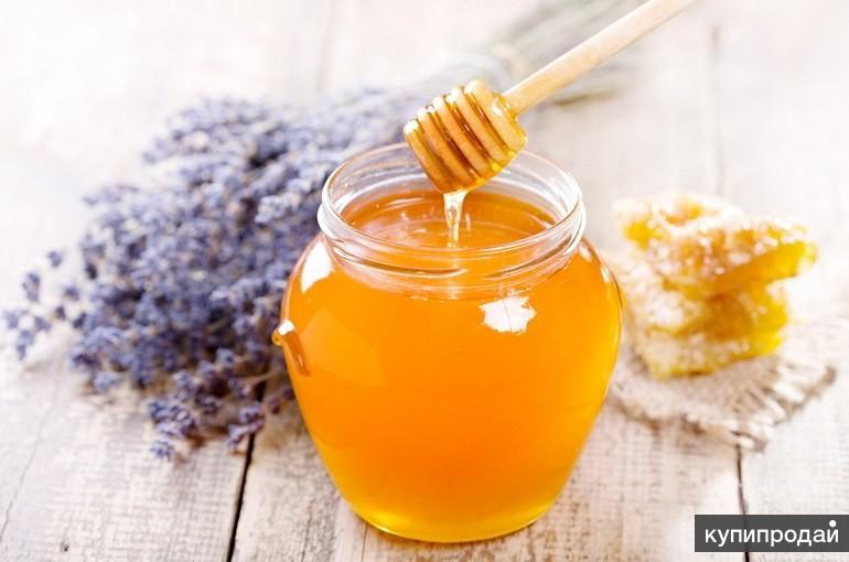 Куплю мед крупным и мелким оптом