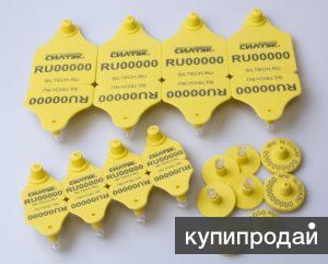 Ушные бирки для маркировки животных в Крыму с RFID метками