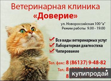 """Ветеринарная клиника """"Доверие"""""""