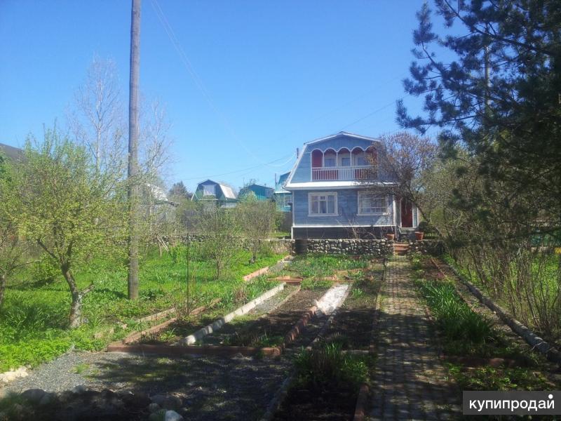 Уютная дача с домом и баней на берегу реки Вологды!