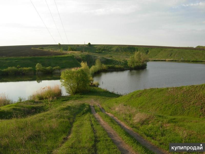 2 пруда , 22 га. с.Солдатское.