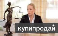 Помощник юриста обязанности мой народ
