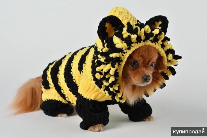 Одежда для собак на заказ и в наличии