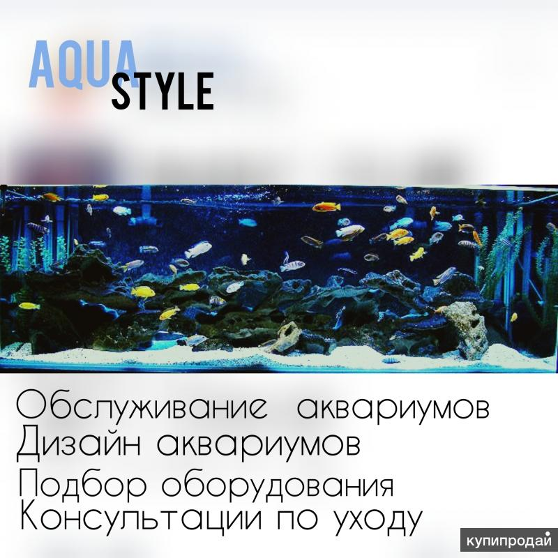 Обслуживание аквариумов