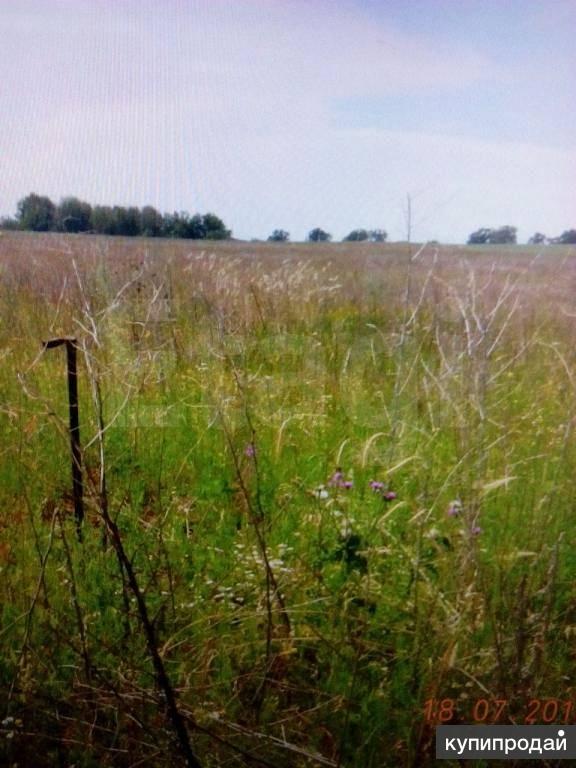Продам земельный участок в с.ст. Юматово