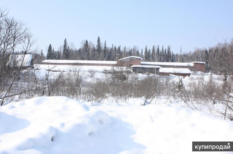 Земельный участок с постройками (Свинокомплекс)