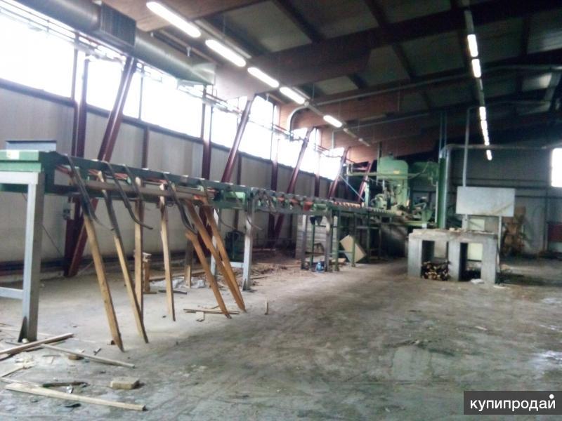 Продаю линию лесопиления CANALI