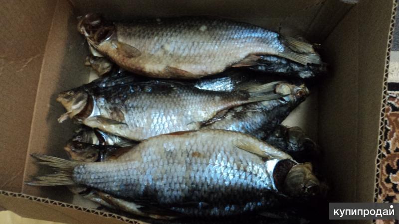 плотва лещь вяленный Брейтовского рыбозавода