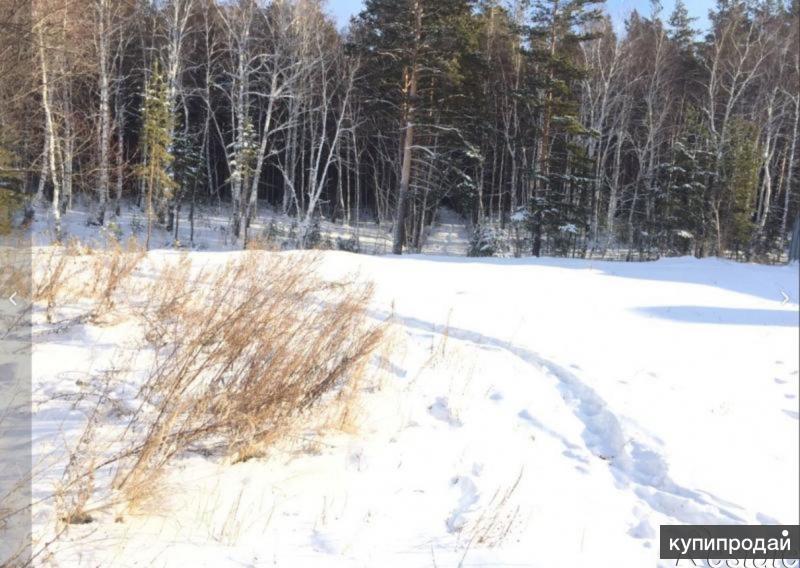 срочно продам участок на Байкальском тракте
