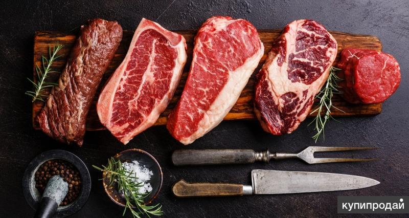 Купим просроченное мясо говядины