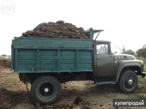 Навоз коровий ( перегной,свежий), чернозем