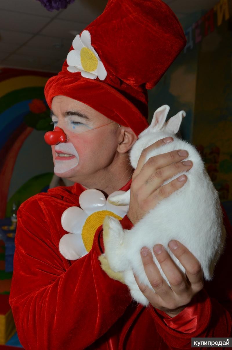 Клоун с животными на день рождения