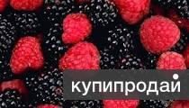 Сбор ягоды