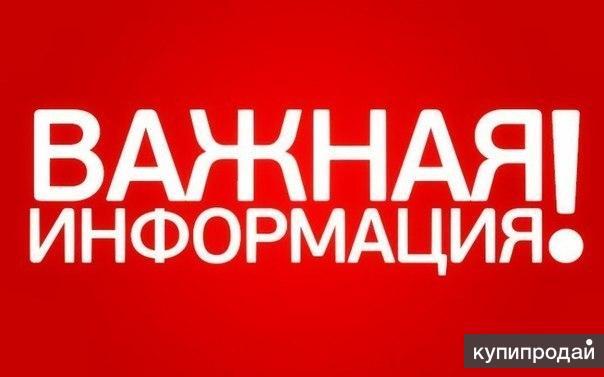 Реальный заработок в Интернете от 5 000 рублей в день.