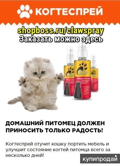 Когтеспрей спрей для кошек