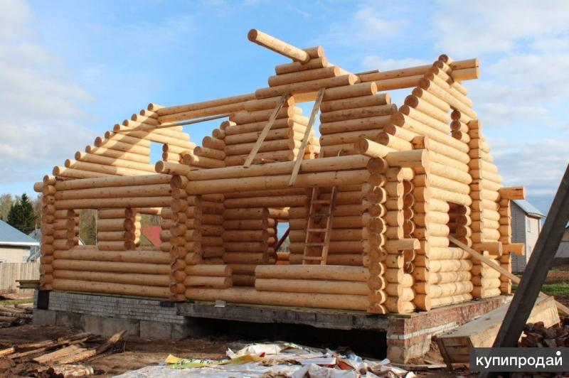 Срубы домов и бань любых размеров.