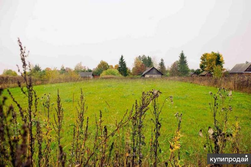 Боюсь, аренда земли под сельское хозяйство ленинградская область был след