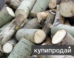 Квартирник осина (дрова от заготовителя)