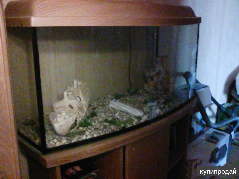 продам аквариум с тумбочкой