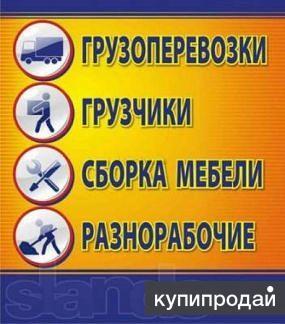 Грузчики-Переезды-Сборка-Разборка Мебели
