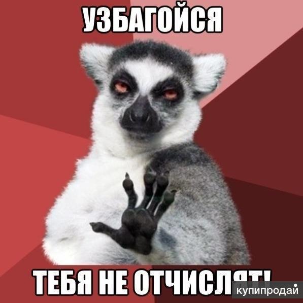 Заказать курсовую в Нижнем Новгороде