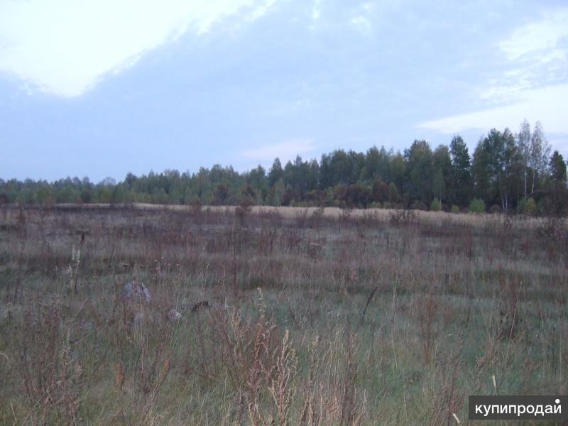 Продается земельный участок  общей площадью 17га земли.