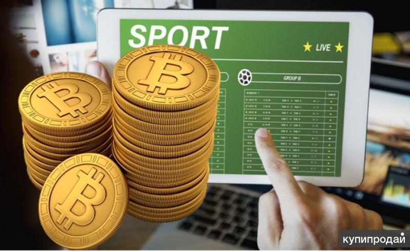 Как заработать небольшие деньги на ставках договорные прогнозы на спорт 2011 бесплатно