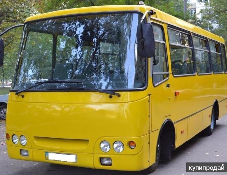 Четыре автобуса Богдан с маршрутами