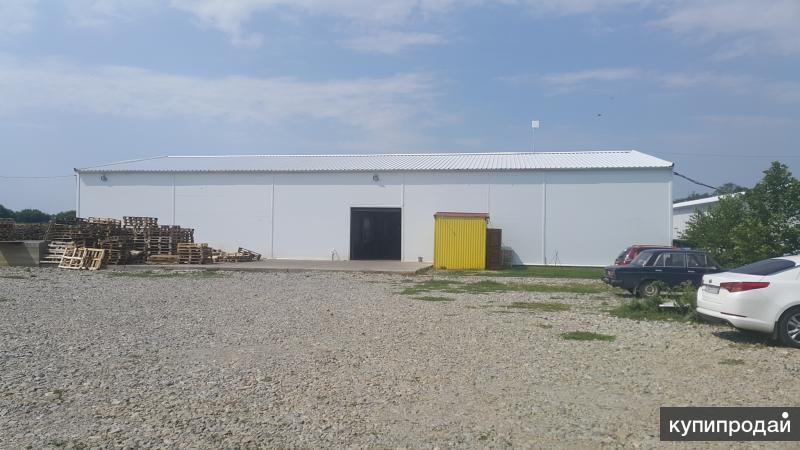 Охлаждаемые склады, площадью 1000 кв.м