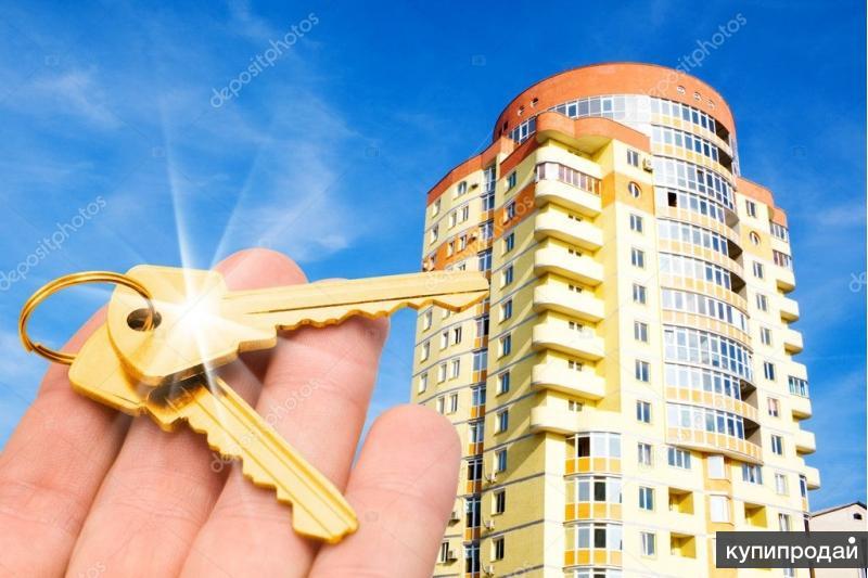 Куплю квартиру в Северске  Варианты Обмена