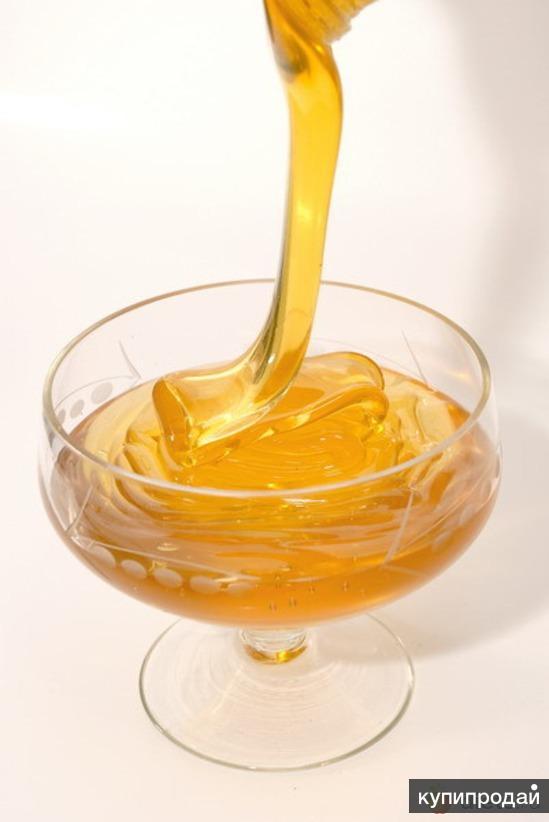 мёд лесной урожай 2013