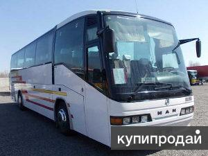 Автобусная доставка на Горный Алтай