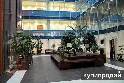 Сниму торгово-офисные площади в г. Москва и МО