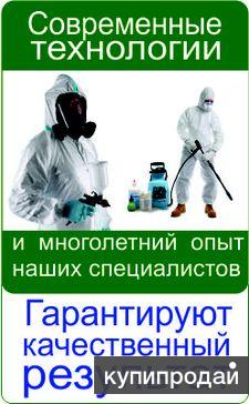 Уничтожение тараканов, клопов, муравьев