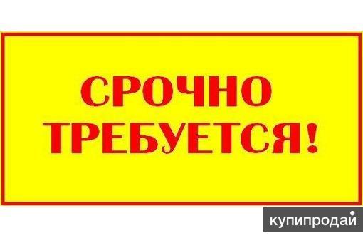 АДМИНИСТРАТИВНАЯ ОХРАНА (м/ж, без лицензии)