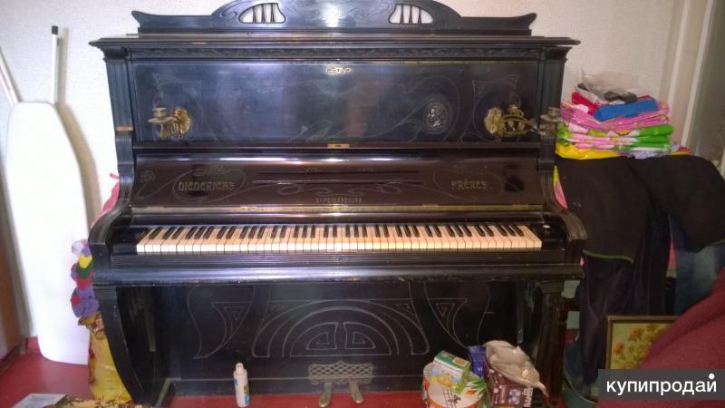 пианино гитара мандалина 19 век