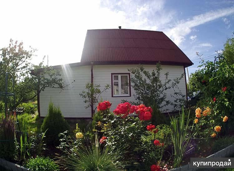 Приведём в порядок домик на даче, дачный ремонт в Пензе