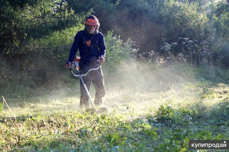 Покос травы, благоустройство участков, дачные работы