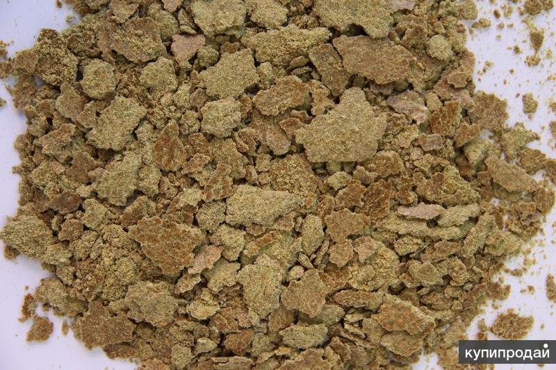 Тыквенный жмых (природное глистогонное средство)