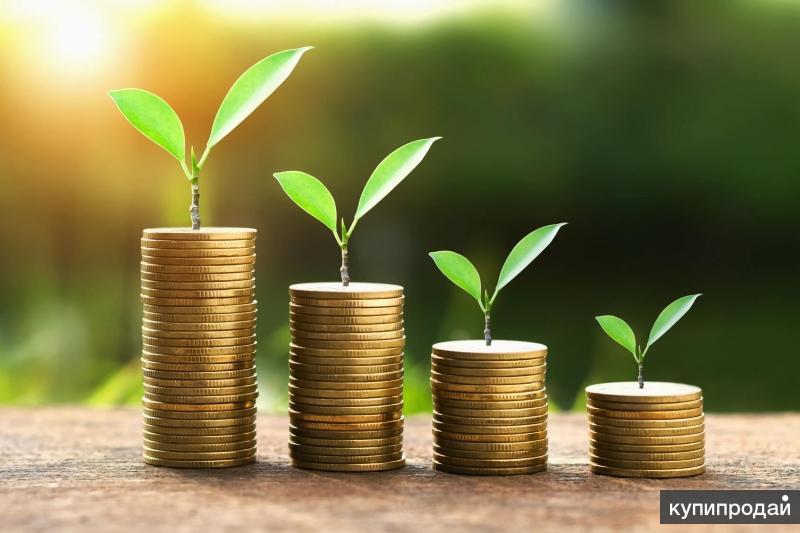 Личные сбережения и займы