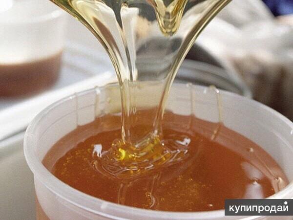 Продаю натуральный, экологический чистый мёд