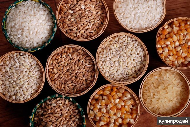 Оптовая продажа бакалейной продукции (Крупы)